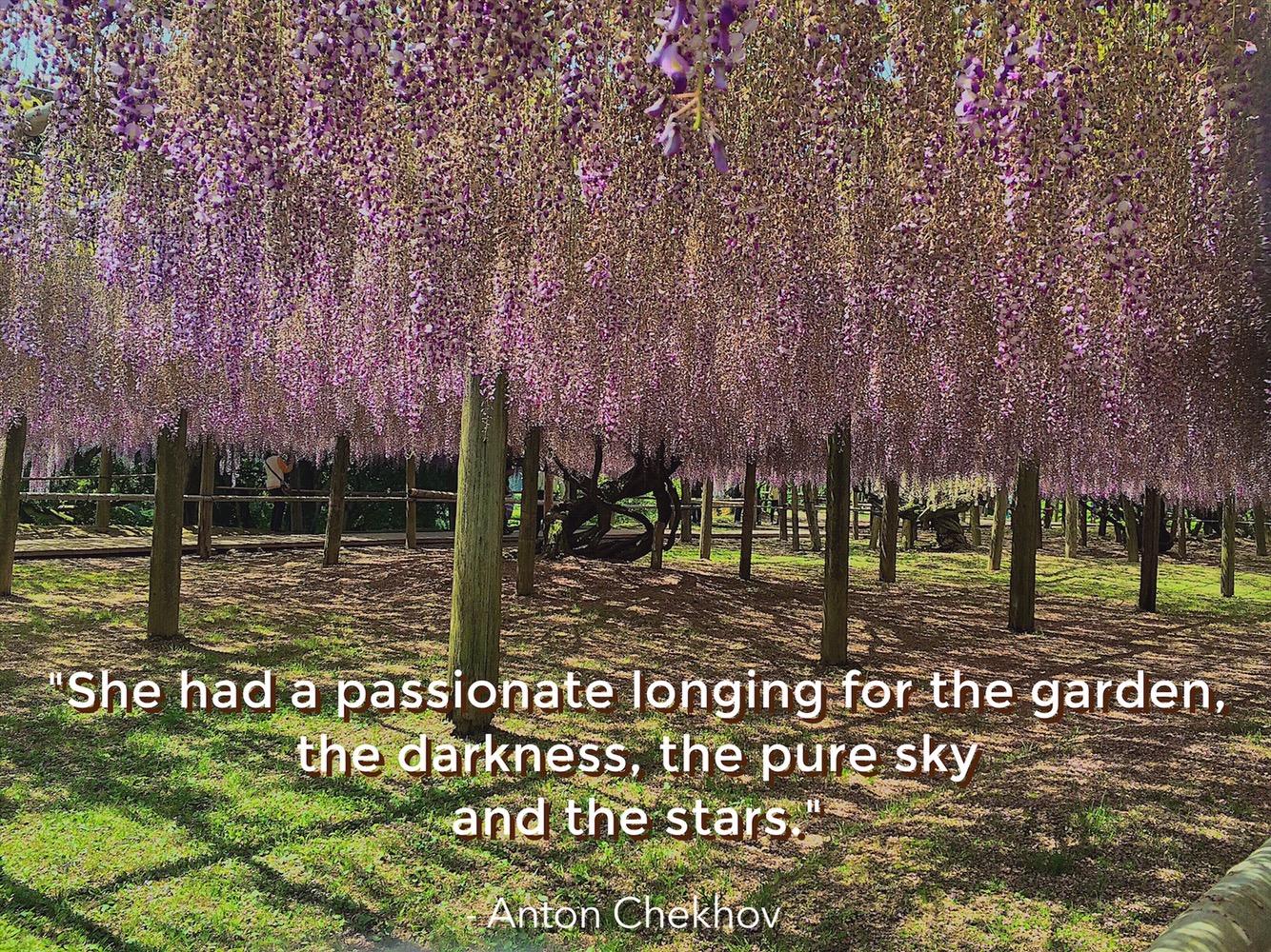 Kawachi Fujien Wisteria Garden Quote Anton Chekhov