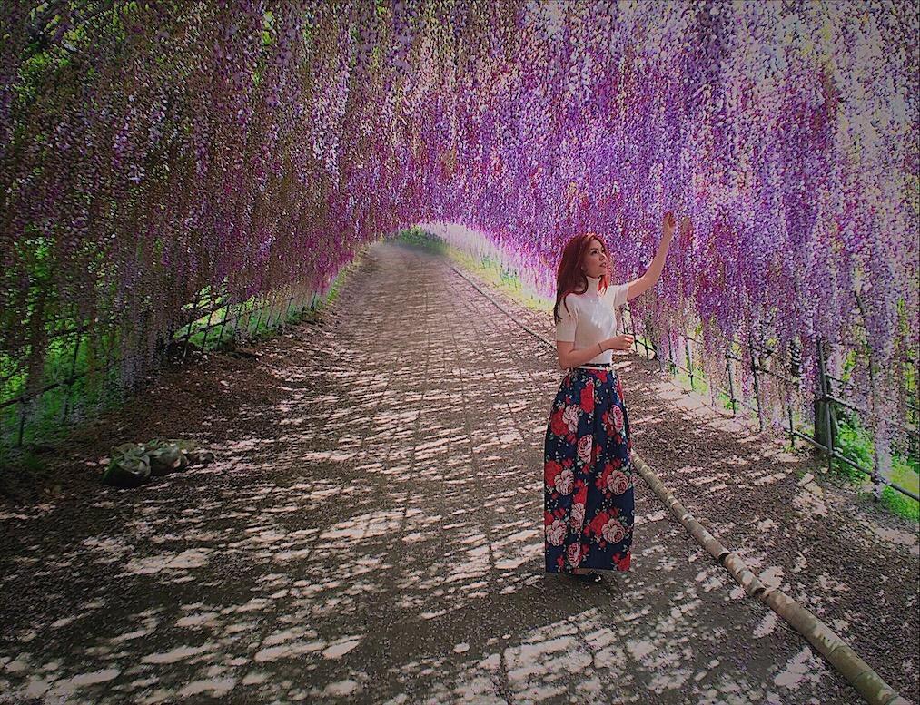 Kawachi Fujien Wisteria Garden Bianca Valerio