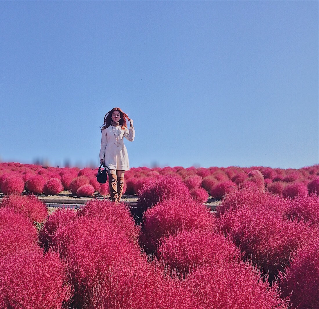 Bianca Valerio at Hitachi Seaside Park Ibaraki Japan