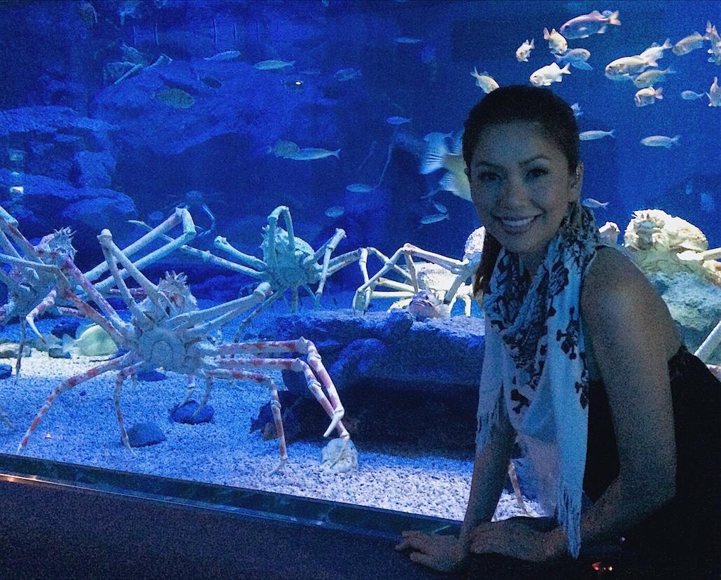 Osaka Aquarium Bianca Valerio Osaka Travel Guide