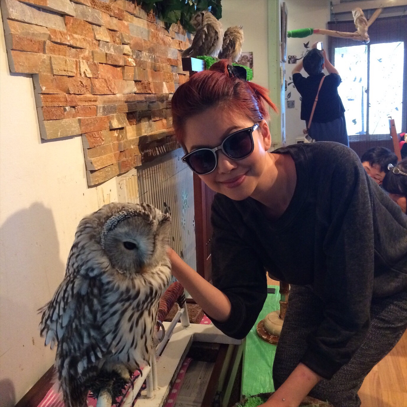 Owl Cafe Bianca Valerio Osaka Travel Guide