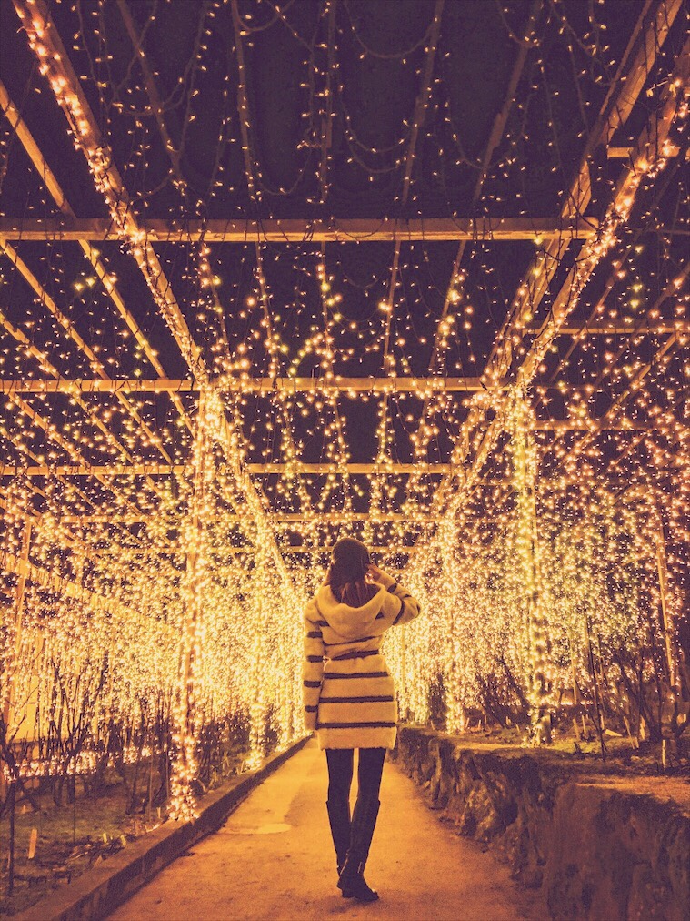 Bianca Valerio Yuushien Garden Night Illumination Matsue Japan
